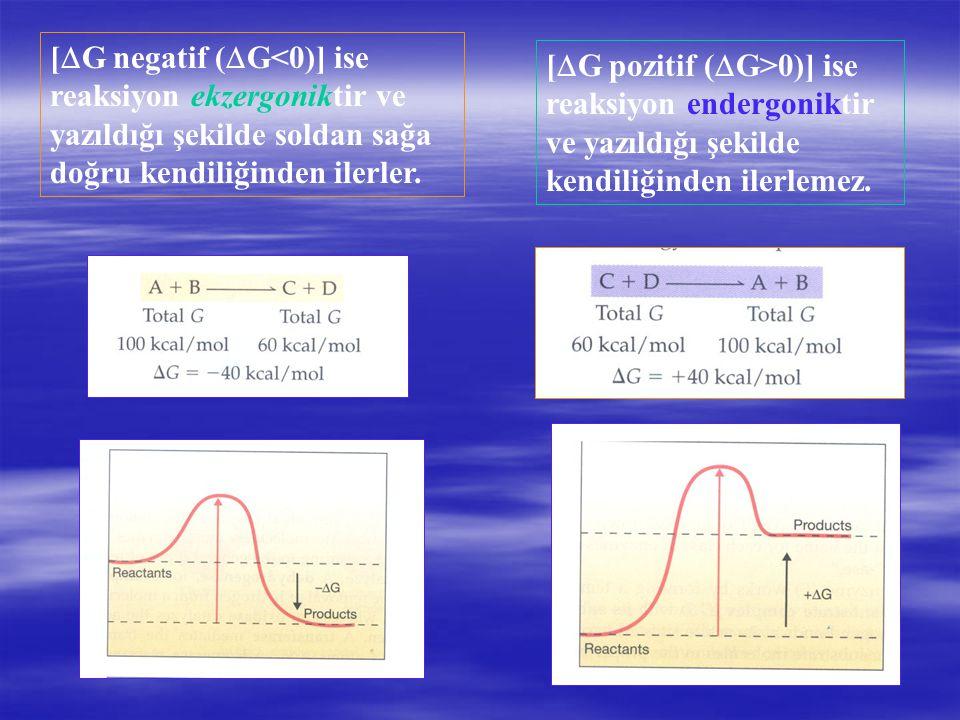 [G negatif (G<0)] ise reaksiyon ekzergoniktir ve yazıldığı şekilde soldan sağa doğru kendiliğinden ilerler.